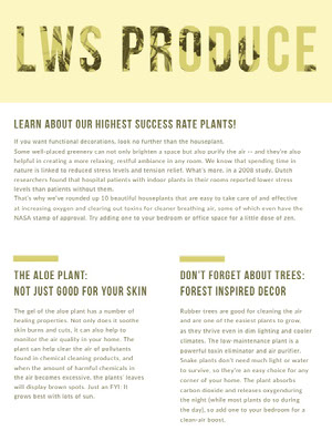Yellow Agriculture and Plants Newsletter Graphic Newsletter