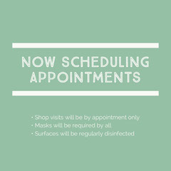 Mint Green Small Business Appointment Announcement Wellness