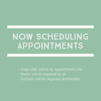 Mint Green Small Business Appointment Announcement COVID-19 Re-opening