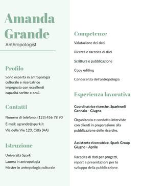 Amanda Grande  Curriculum professionale