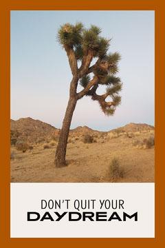 Orange Desert Themed Photo Quote Collage Cactus