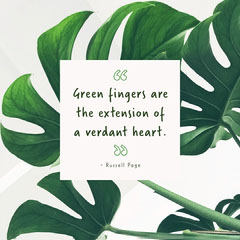 Green fingers quote instagram square Plants