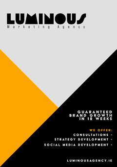Luminous Marketing Agency Flyer Agency