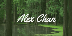 Green LinkedIn Banner with Name and Forest Trees