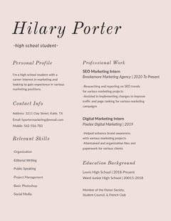 Pink Marketing High School Student Resume Marketing
