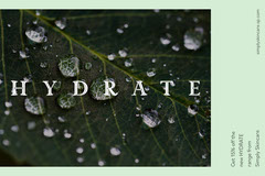 Green Leaf Photograph Hydrate Skincare 15% Off Postcard Water