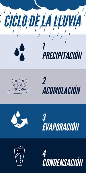 CICLO DE LA LLUVIA Infografías