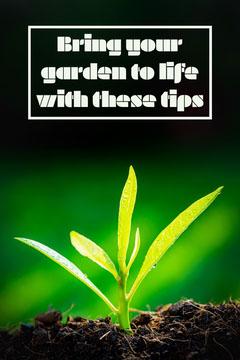 Garden Tips Pinterest Garden